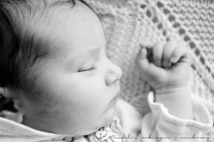 Daynah newborn images March 2016-98