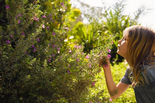 Justine Bain low res colour images-28